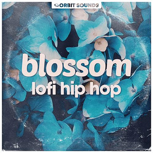 Blossom – Lofi Hip Hop Cover_500