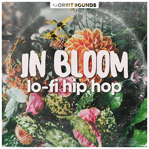 In Bloom – Lo-Fi Hip Hop Cover_500